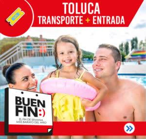BUEN-FIN-TOLUCA