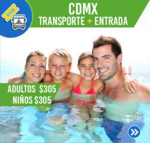 P.CDMX-2020