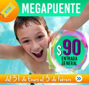 1er.-MEGA-PUENTE-ENEREO-FEBRERO-31EN.-03FEB.